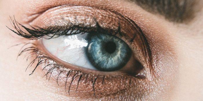 eye primer untuk makeup mata